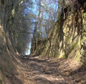 Kozubowski Park Krajobrazowy