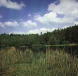 Szaniecki Park Krajobrazowy