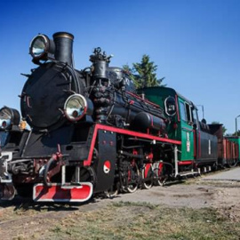 Pociąg do Ponidzia